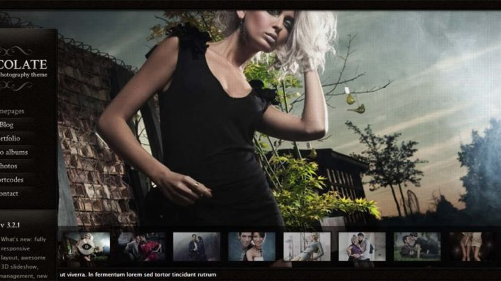 20 Best WordPress Photography Themes That Everyone Will Love