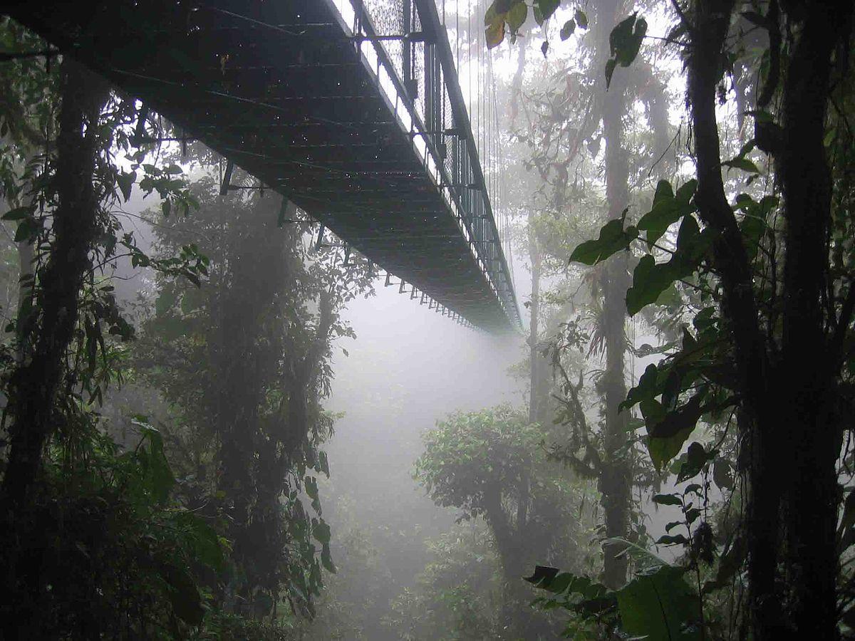 Reserva Monteverde, Costa Rica