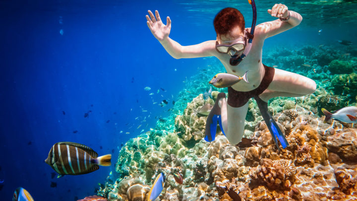 First Time Snorkeling: Here is What You Need
