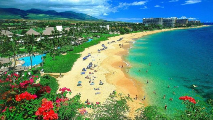 Visiting Maui – Here is What you Need to Know