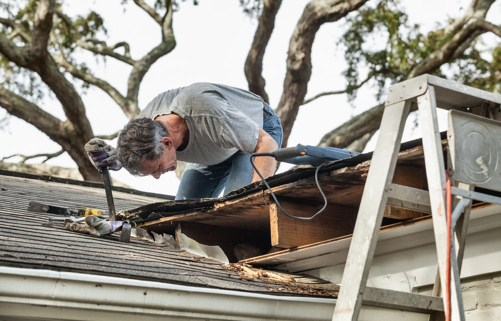 Spring Roof Maintenance tips – 2020 Guide