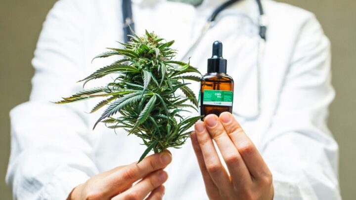 Benefits of Using CBD Strains for Mood Disorders – 2020 Guide