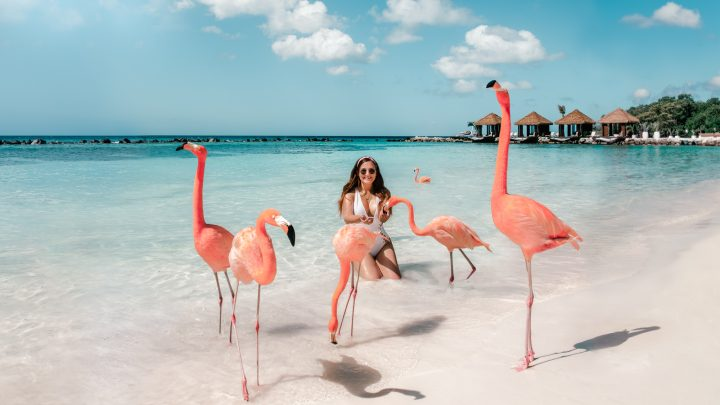 All You Need to Know About Aruba– 2021 Guide